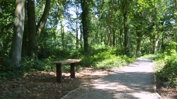 Image of Worlebury Woods, Weston-super-Mare